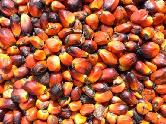 Olio di Palma nei dolci